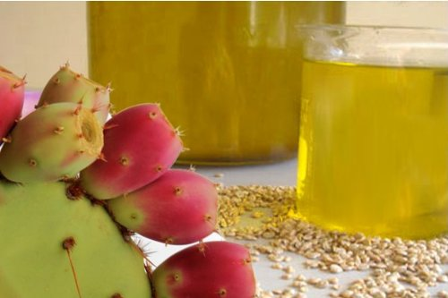 Prickly Pear Seed Oil - Cactus