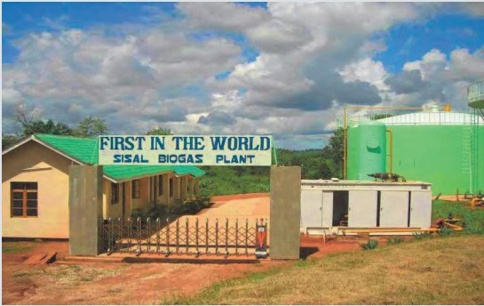 sisal biogas